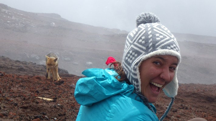 Katie Orndhall enjoying the starting snow-fall and watching over the Andean fox (photo: Katie Goodwin).