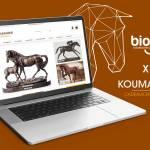 Koumarine - Vente en ligne