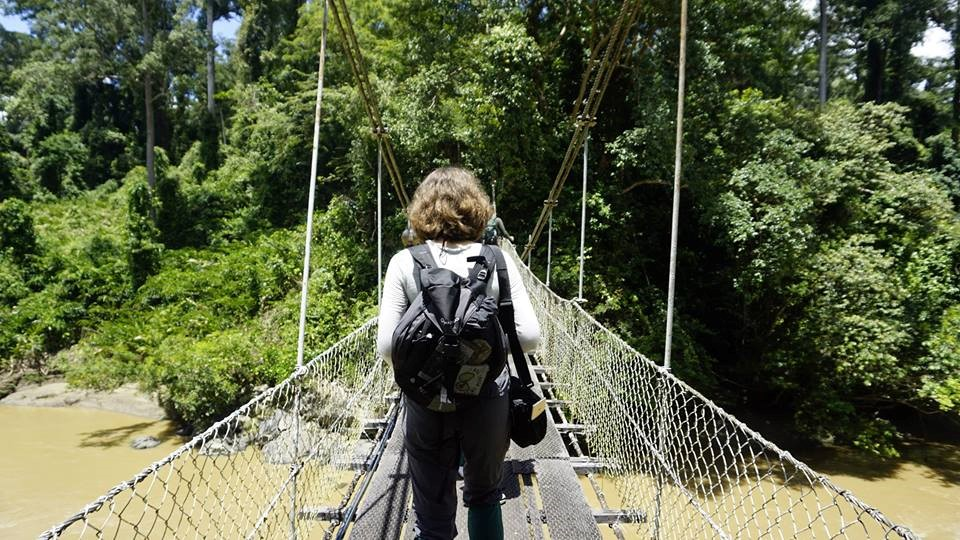 Bridging the gap between aspiring conservationists and the rainforest