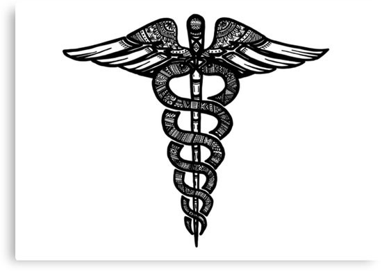 Fig 6 Caduceus Staff illustrated by JaymeC
