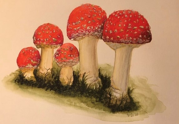 Fly Agaric Artwork by Vivi Sterling