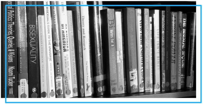 A black and white close-up of several books about bisexuality on a shelf.