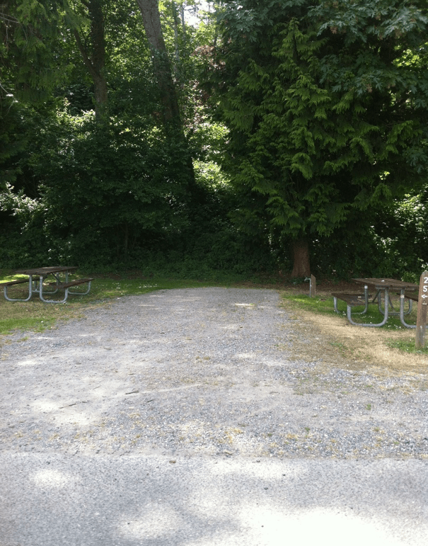 site25