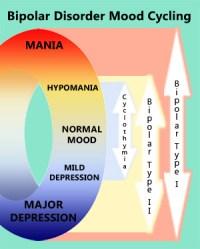 Bipolar Cycle Chart, Interesting