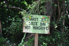 """Stop tossing garbage in our mangroves"""