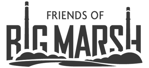 Friends of Big Marsh Logo
