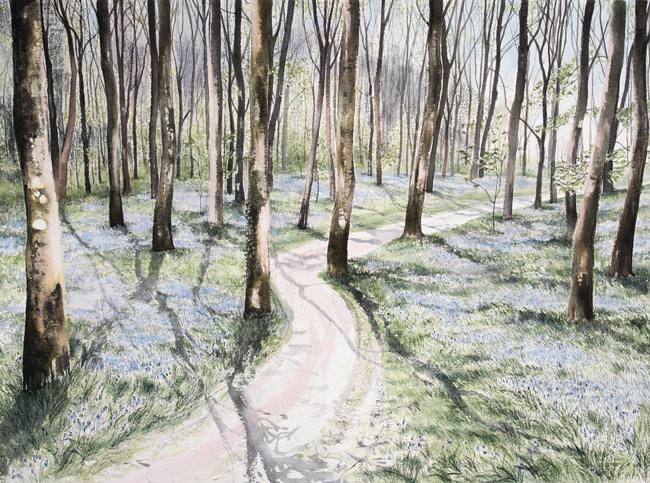 Pamela Grace - Woods in Spring (pen & ink)