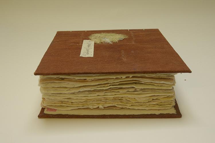 Anna S. King. Garden Scrapbook