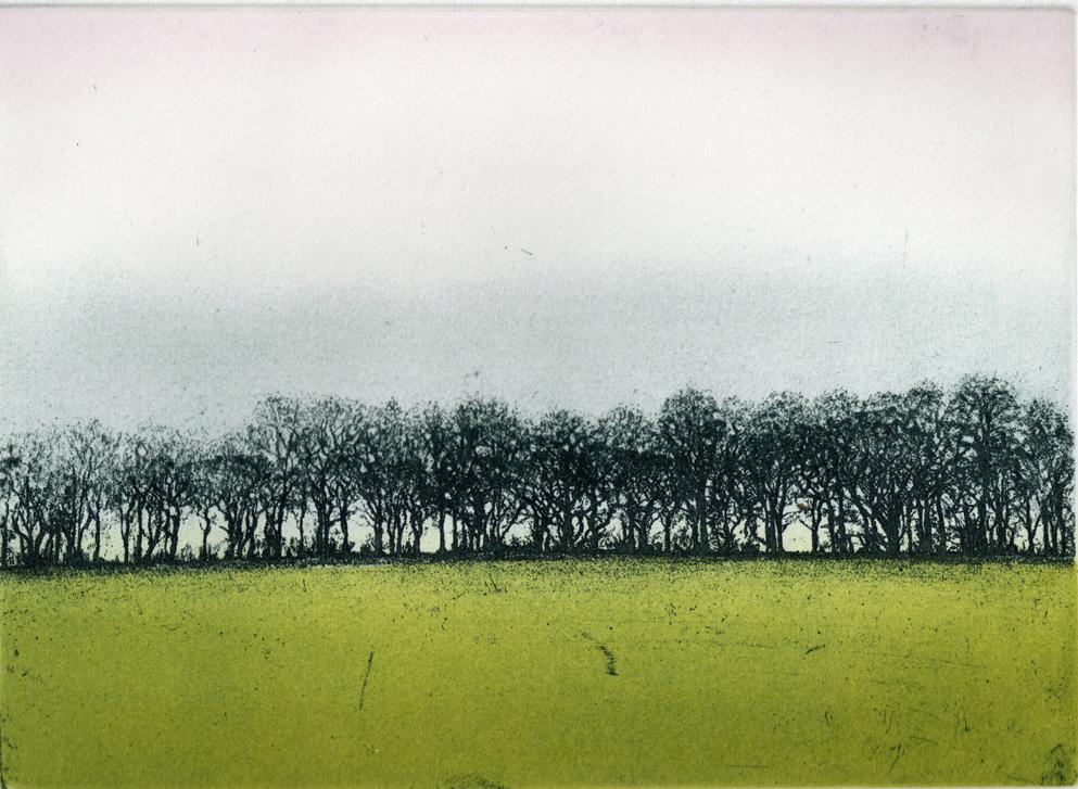 Ian McNicol. Treeline