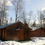 Caribou Cabin in Winter