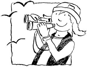 Birding Adventures with Paddy Cunningham
