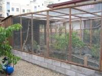 Bird Aviary Building Plans | Birdcage Design Ideas