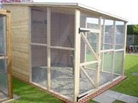 Birds For Outdoor Aviaries | Birdcage Design Ideas