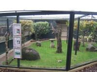 Building Plans For A Bird Aviary | Birdcage Design Ideas