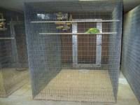 Walk In Bird Aviary Cage Large | Birdcage Design Ideas