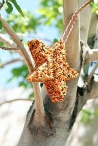 Bird Seed Cookie Cutter Ornament | Birdcage Design Ideas