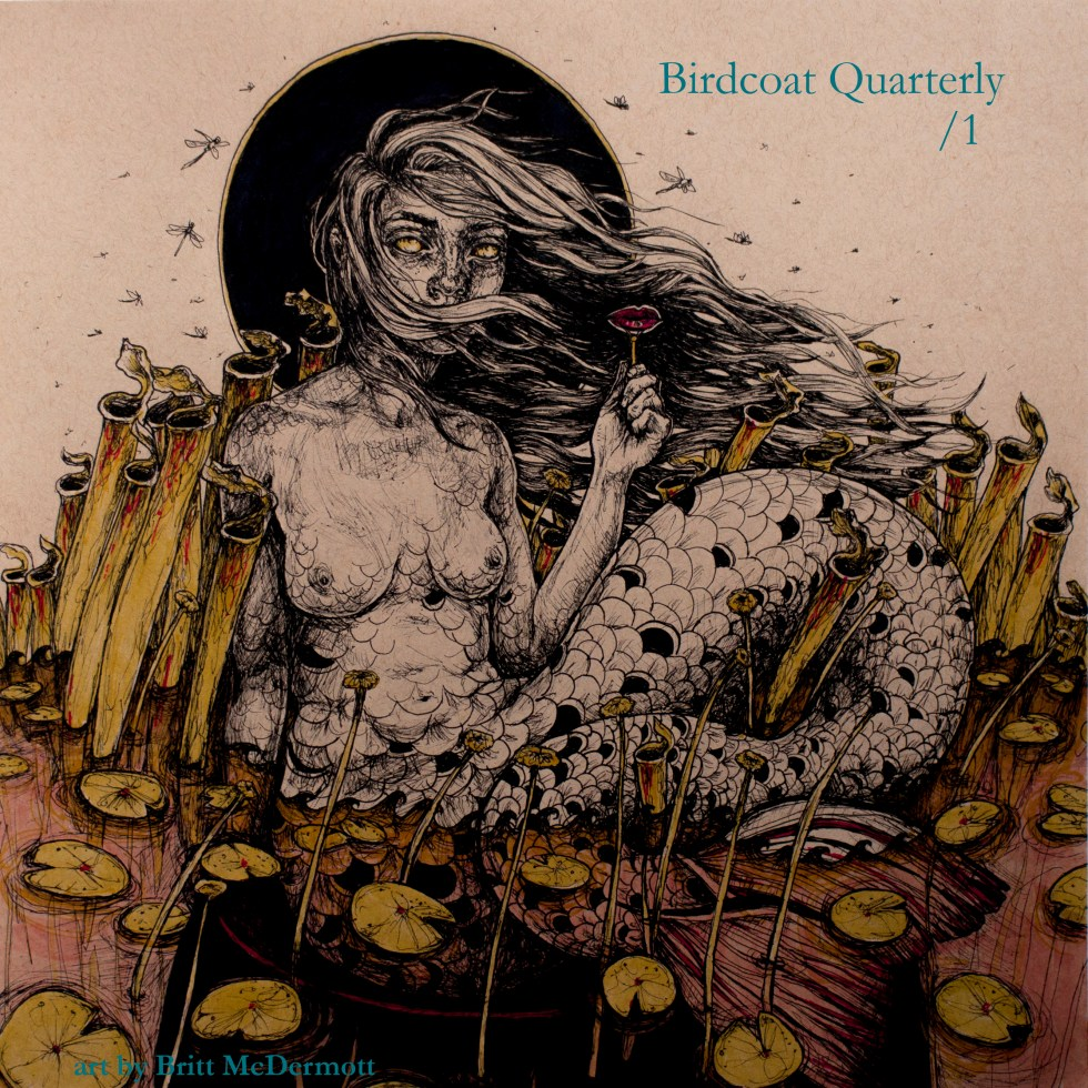 Cover Image: Birdcoat Quarterly Issue 1