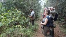Na ścieżce w dżungli - Sri Lanka
