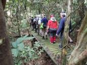 Na ścieżce w dżungli – Malezja