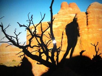 Dead Horse at down Utah shadow