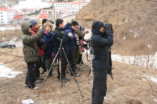 A sociable visit to a cold Lingshan on Saturday to see the Guldenstadt's Redstarts.