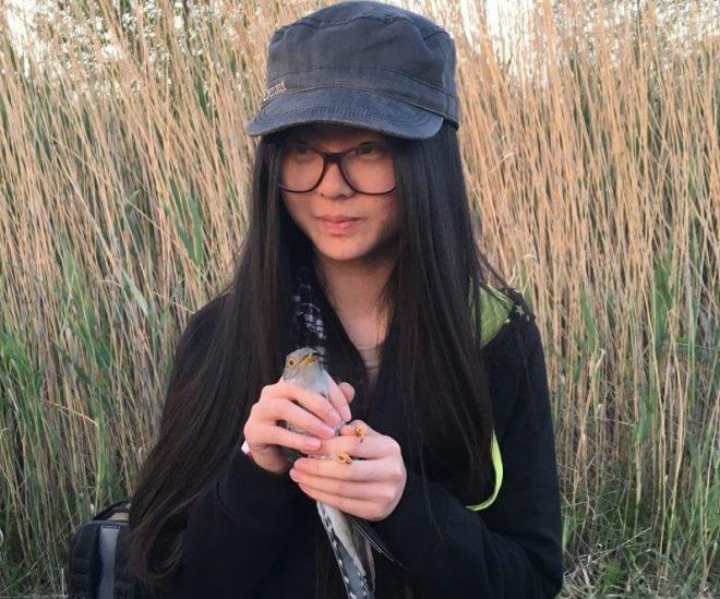 2016-05-26 Chris Peng's daughter releasing cuckoo