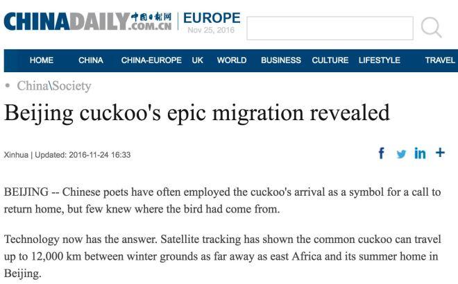 china-daily-article-header