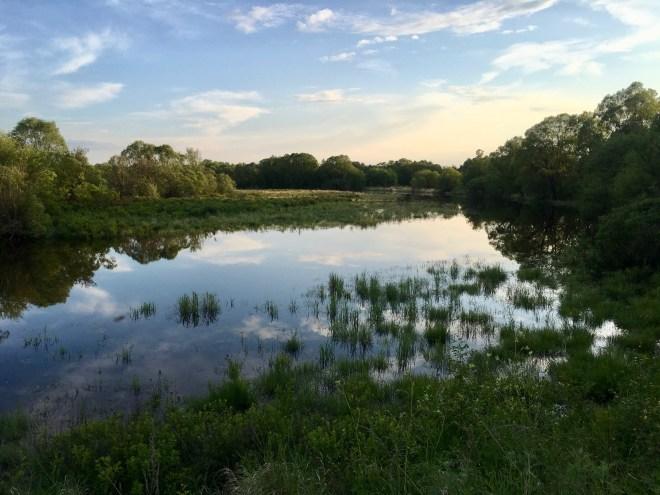 2018-06-19 Inner Mongolian wetland, Wuerqihan