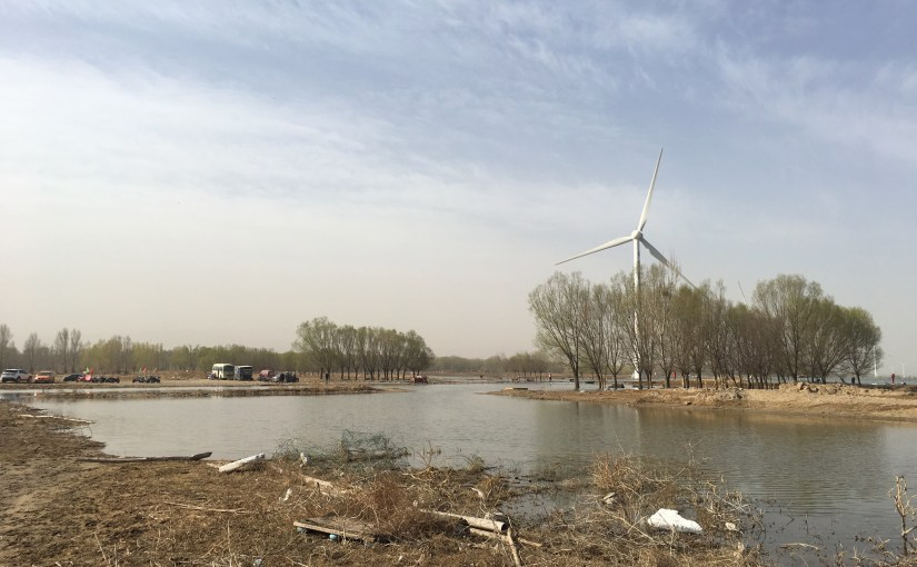 Singing SWINHOE'S RAIL in Beijing