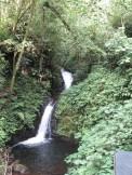 Waterfall at Monteverde - 3-17-2015