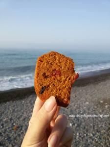chia-tohumlu-kek