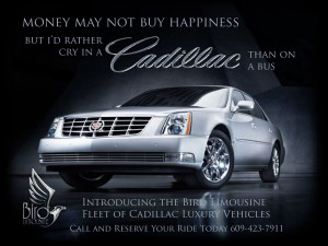 Bird Limousine Money save