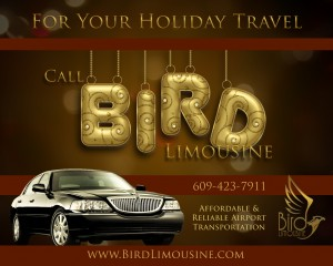 Bird Limousine car service