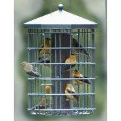 New Bird Feeders For Your Backyard Birds