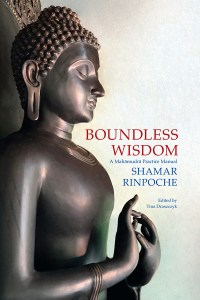 Cover image: Boundless Wisdom: A Mahamudra Practice Manual
