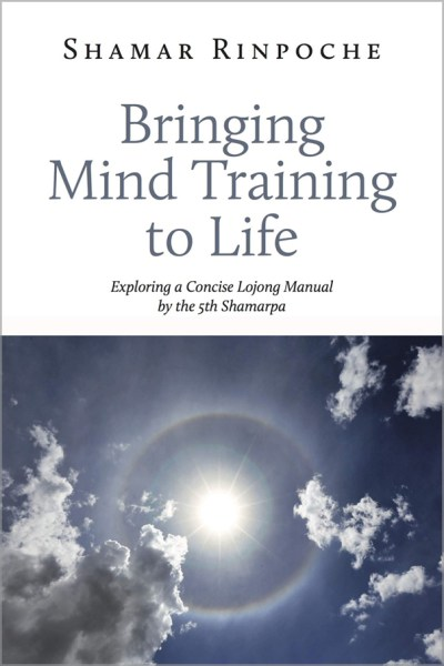 a book cover showing a sun in the sky (Bringing Mind Training to Life