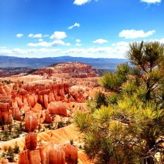 bryce_canyon_vue