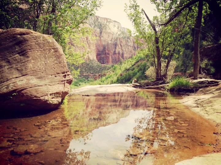 Zion Park : la force tranquille