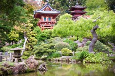 Japanese Tea Garden, Golden Gate Park, San Francisco