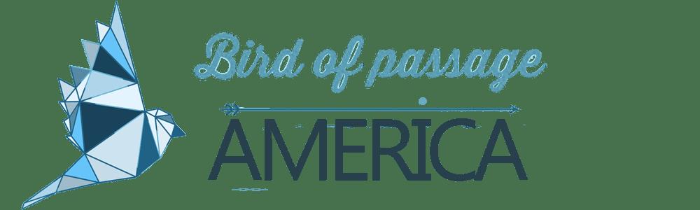 Bird of passage america