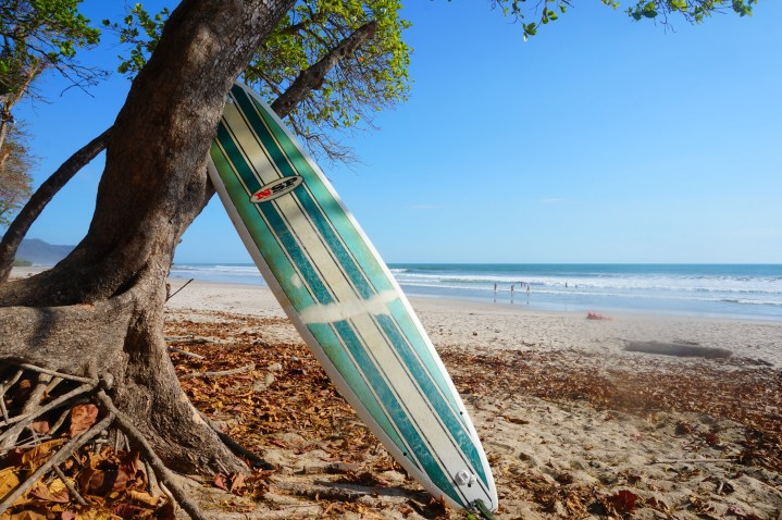 Costa Rica : wild et bohème