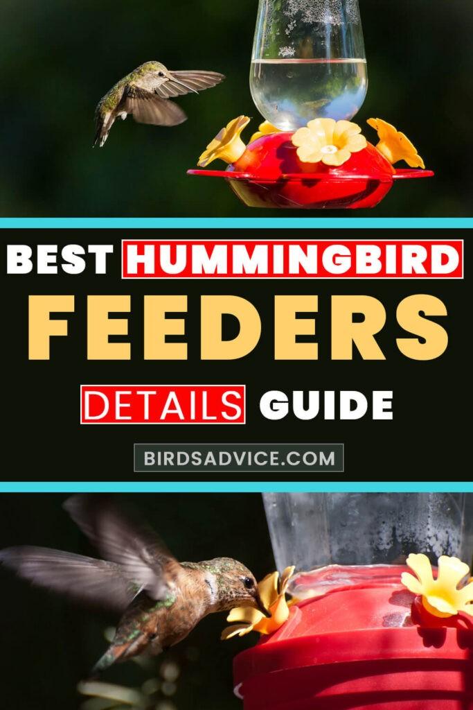 Best Hummingbird Feeder | Pinterest Pin