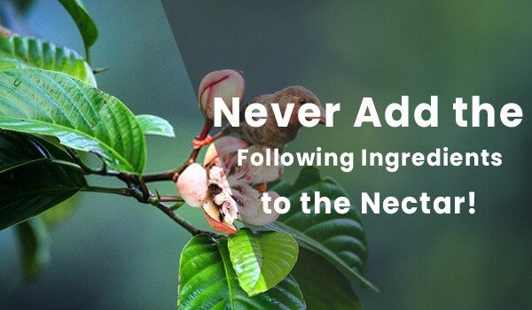 Never Add the Following Ingredients to the Nectar