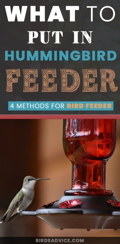 Put in Hummingbird Feeder