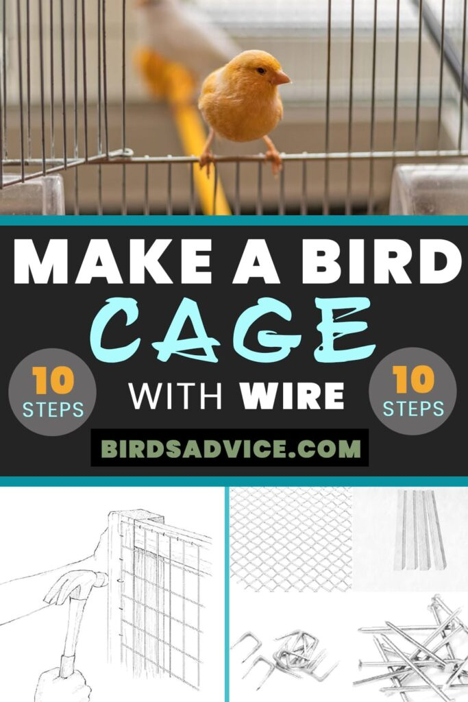 Make A Bird Cage With Wire