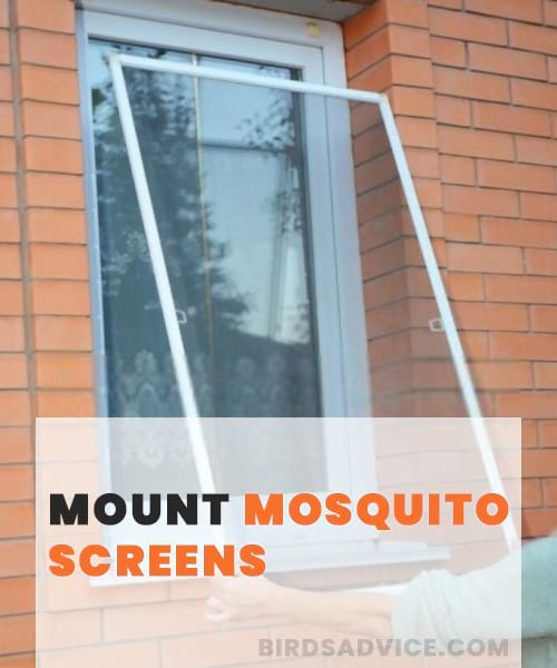 Mount Mosquito Screens