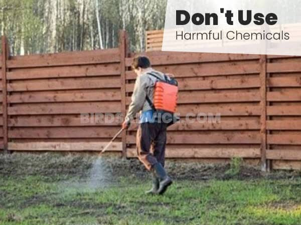 Don't Use Harmful Chemicals