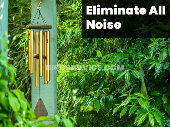 Eliminate All Noise