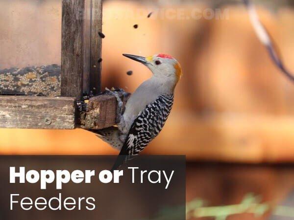 Hopper or Tray Feeders