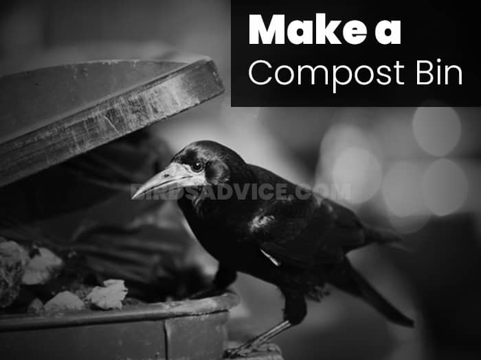 Make a Compost Bin